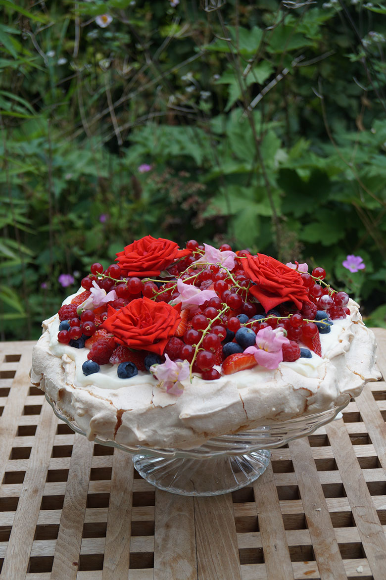 Pavlova rood fruit 1